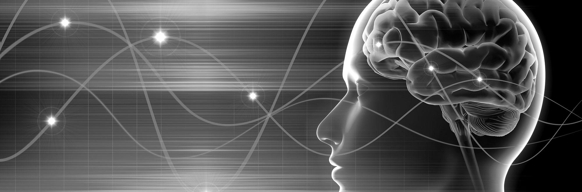 Brain Wave Illustration